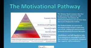 Maslows-Hierarchy-of-Needs-Maslow-Motivation-Theory-Pyramid-of-Needs-Humanistic-Psychology